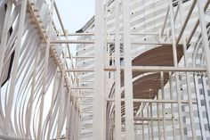 Gallery - Experimental Structure of Bent Wood Takes Shape in Genoa - 12