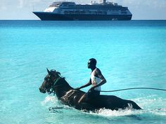 ride a horse in the ocean! Best Places To Honeymoon, Black Horses, Horse Love, Horse Riding, Jamaica, Equestrian, Most Beautiful, Dream Wedding, Creatures