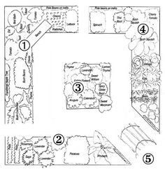 Landscaping Software - Offering Early View of Completed Project Step By Step Your Garden Grows: Five-Year Kitchen Garden Design Plan The Plan, How To Plan, Layout Design, Design Ideas, Garden Design Plans, Potager Garden, Herb Garden, Mother Earth News, Square Foot Gardening