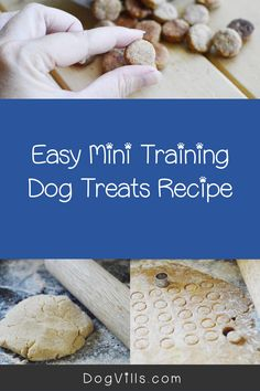 Looking for the perfect homemade mini training dog treats recipe?Youre going to love this super simple idea!It only has three ingredients and all of them are right in your grocery store.Read on to learn how to make it! Homemade Dog Treats, Homemade Baby, Dog Treat Recipes, Baby Food Recipes, Peanut Butter For Dogs, 3 Ingredient Recipes, Best Dog Food, Super Simple, Grocery Store