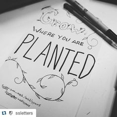SSLetters is such an awesome group to practice with. I am so inspired by their members & their support.  #Repost @ssletters with @repostapp  Lovely letters by one of our most loyal members @meeklyyours! Have you seen her whole line of hand lettered greeting cards? We adore them! #ssletters #acreativedc #lettering #handlettering #doodle #dtss #MadeAtCatylator by meeklyyours