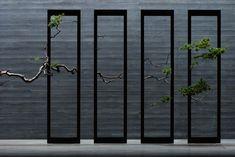 Image result for naoki sasaki