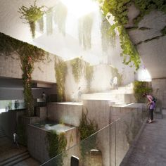 Harry Gugger-Designed Museum to House Central America's Largest Maya Collection