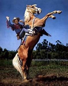 Roy Rogers and Trigger. Trigger (originally named Golden Cloud, was a hands inches, 160 cm) palomino horse made famous in American Western films with his owner and rider, cowboy star Roy Rogers. Palomino, Pretty Horses, Beautiful Horses, Animals Beautiful, Dale Evans, Real Cowboys, The Lone Ranger, Tv Westerns, Cowboy Art