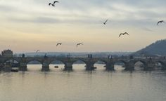 Jane at home: Na tom pražským mostě ...