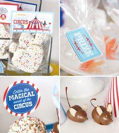 circus-birthday-party-prizes-chocolate-mice