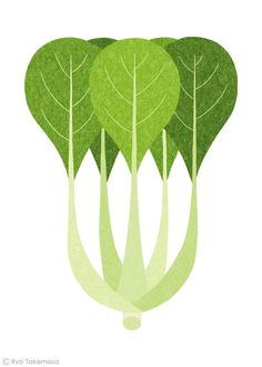 baby bok choy // illustration Ryo Takemasa