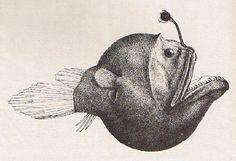 angler fish #deepsea