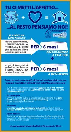 #adozioni - La #LegadelCane promuove le #adozioni dei #cani anziani in collaborazione con #Sanypet #Forza10 - #campagne #2013 #2014