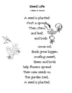 Activities, Recital and Planting seeds on Pinterest