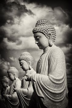 It is exactly because the Buddha was a human being that countless buddhas are possible - Thich Nhat Hanh