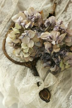 faded hydrangeas and old lace