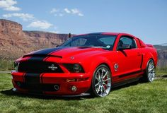 "Mustang Shelby GT500 Super Snake. More into classic ones for ""car goals"" but GOOD LORD"