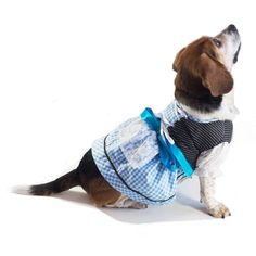 EINSZWEIDOG Oktoberfest German Dirndl Dog Dress Costume, Multiple Sizes, Blau -- You will love this! More info here : Costumes for dog