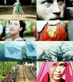 """""""Ned remembered the moment when all the smiles died, when Prince Rhaegar Targaryen urged his horse past his own wife, the Dornish princess Elia Martell, to lay the queen of beauty's laurel in Lyanna's lap. He could see it still: a crown of winter roses, blue as frost.""""  - A Game of Thrones"""
