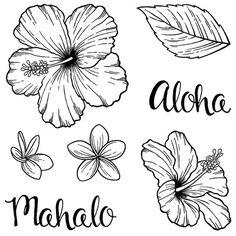 Easy To Draw Hawaiian Flowers Rocks Pinterest Drawings