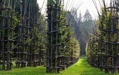 I 122 Grandi Giardini Italiani da vedere almeno una volta nella vita - Arte Sella - Borgo Valsugana - Italia