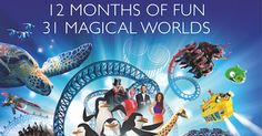 Win four Merlin Annual Passes - Competitions - Junior