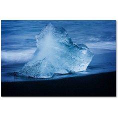 Trademark Fine Art 'B for Blue' Canvas Art by Philippe Sainte-Laudy, Size: 16 x 24, Multicolor