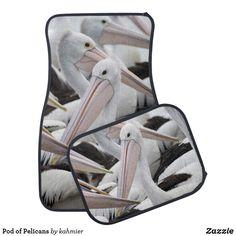 Pod of Pelicans Car
