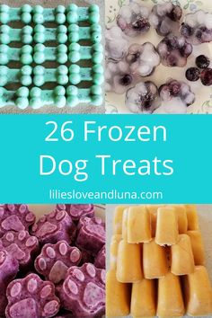 26 frozen dog treats to make for your dog this summer.