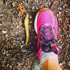 Big ol' slug. @brooksrunning #runhappy
