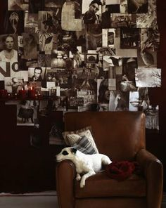 Leather chair and black and white photographs. Beautiful, masculine. Also, great dog.