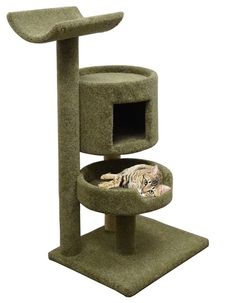 Green Cat Furniture for Large Cats 45 inch Tall Kitty Tree with Hammock and Bed -- For more information, visit image link. (This is an affiliate link and I receive a commission for the sales) #MyCat