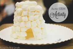 December Arctic STEM activity of building an igloo. Talk about what is needed to survive in arctic environments and how igloos work. Steam Activities, Winter Activities, Christmas Activities, Science Activities, Science Lessons, 1st Grade Science, Stem Science, Elementary Science, Science Fair