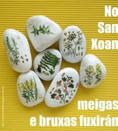 "Piedras pintadas ""Hierbas de San Juan"" / Painted stones ""St. John's Herbs"""