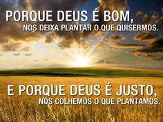 Porque #Deus é bom, nos deixa plantar o que quisermos. E porque Deus é justo, nós colhemos o que plantamos.