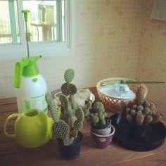 แต่งบ้านแบบ DIY ทั้งหลังด้วยงบไม่ถึง 1 แสน