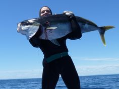 Kingi - Spearfishing New Zealand