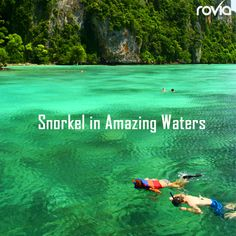 2014 Bucket list idea: Snorkel in Amazing Waters  Book your next trip here: letsgodreamvacation.dreamtripslife.com  ~Travel on!