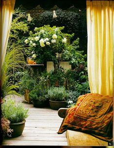 """""""Timber flooring and decking adds to the charm of this urban garden escape. Earthy, moss coloured pots filled with texture rich plants are used to curve the path, giving an illusion of space. Layered planting of larger plant species behind these pots gives the garden a sense of perspective and mimics nature. The garden gives the impression it goes on and on."""""""