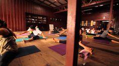WYA YOGA Yoga School, Yoga Teacher Training, Education, Learning, Teaching, Studying