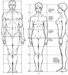 Pues bien, aunque siempre existirá la excepción que confirme la regla, con carácter general podemos decir que:- Los hombros de un hombre son algo más anchos: