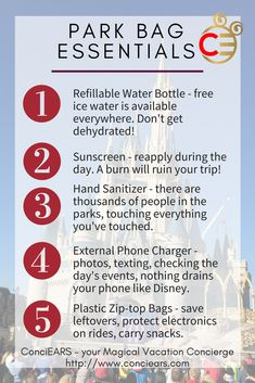 5 things you need for any day in a Disney Park. You might want more, but you will need these.