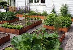 The Advantages Of Growing Food Indoors With Hydroponic Gardening Herb Garden, Vegetable Garden, Hydroponic Farming, Herbs Indoors, Edible Garden, Growing Vegetables, Garden Planning, Backyard Landscaping, Garden Inspiration
