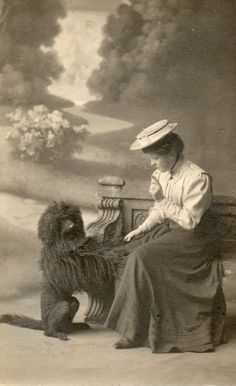 Victorian/Edwardian lady and corded Poodle, circa 1909