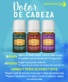 Young Living Panaway, Young Living Thieves, Young Essential Oils, Essential Oil Blends, Young Living Rc, Esential Oils, Yl Oils, Health, Asthma