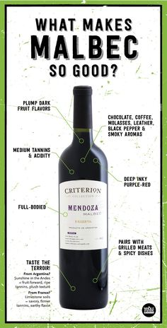 What should you look for in a great Malbec wine? This helps explain why a quintessential Malbec will taste so good!