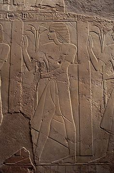 Tomb-Chapel of Ramose in Shaykh Abd Al-Qurnah: Bas-reliefs of Offerings