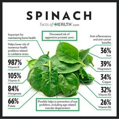 Many parts of your life are affected by nutrition. To have good nutrition you must keep a balanced diet, however, this is often quite difficult. Nutrition Education, Sport Nutrition, Nutrition Tips, Health And Nutrition, Health And Wellness, Spinach Nutrition Facts, Health Fitness, Complete Nutrition, Herbs