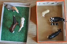 Shoe box farm - Picture Only - link to original site no longer active