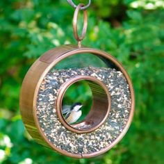 I'm more of a squirrel watcher, but for the bird lovers out there, keep your feathered friends well feed this winter with this cool new Shelby Fly-Through Bird Feeder. This unique ring-shaped and clear view bird feeder lets the bird land in the center to feed from a central hole from either direction and provides an ideal stage for birdwatching. It holds 5 lbs of bird seed, has an easy fill chamber and is constructed from durable copper frame with a hand-polished Venetian bronze finish and…