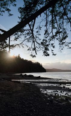 10 Amazing Vancouver Island Resorts. Once you complete a mind-bending hike along the Wild Pacific Trail by Ucluelet walk another six minutes for another mind blower. #britishcolumbia #canada #island #hotels #vancouver #resorts #vancouverisland Vacation Destinations, Dream Vacations, Travel Essentials, Travel Tips, Gold Coast Australia, Whale Watching, Vancouver Island, Resort Spa, British Columbia