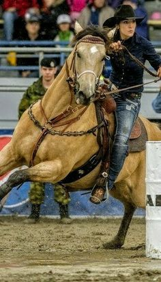 Beautiful horse..awesome picture