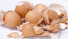 How to Use Egg Shells to Heal your Cavities - Healthy Life Vision Health Benefits Of Eggs, Calcium Rich Foods, Eating Eggs, Organic Fertilizer, Egg Shells, Cavities, Health Remedies, Natural Health, Healthy Life