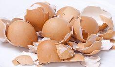 Vyhadzujete škrupiny z vajec? Chyba! Ani sa vám nesnívalo, na čo všetko ich môžete využiť